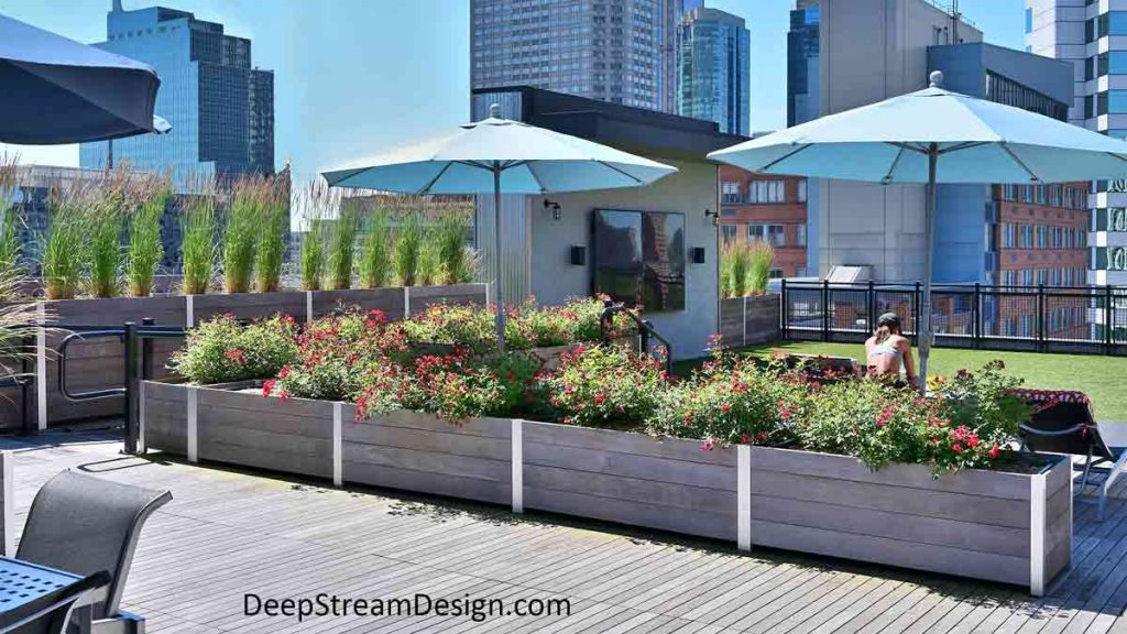 Large, long, rectangular, modular modern Multi-Section Commercial Wood Planters, landscaped with flowering plants and ornamental grasses, create protective parapet walls, and divide an urban roof deck, surrounded by modern high-rise buildings, for different uses.