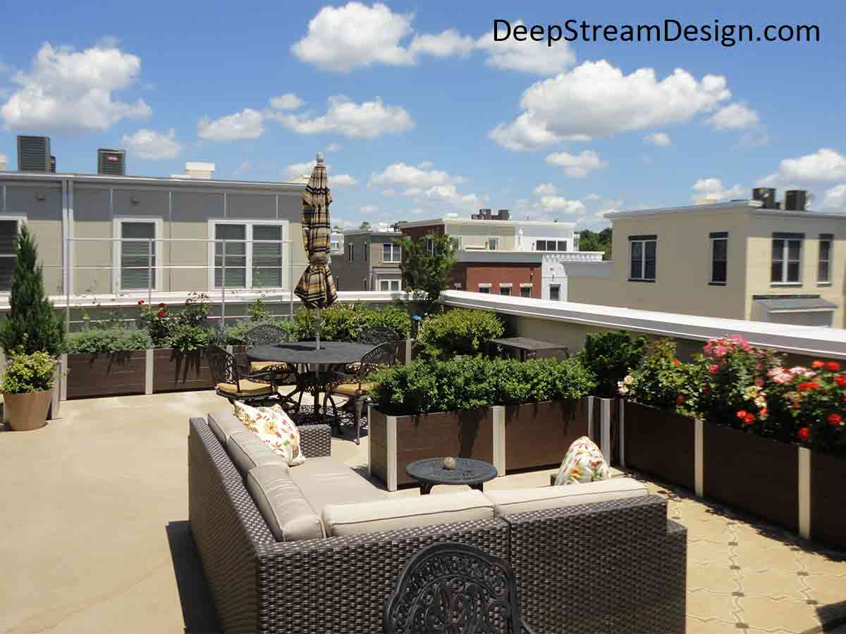At the end of a long row of large landscaped modern Ipe Brown planters, 3 Planters with Trellises, made with stainless steel rod and aluminum uprights, are used as a privacy screen wall on a townhouse roof terrace.
