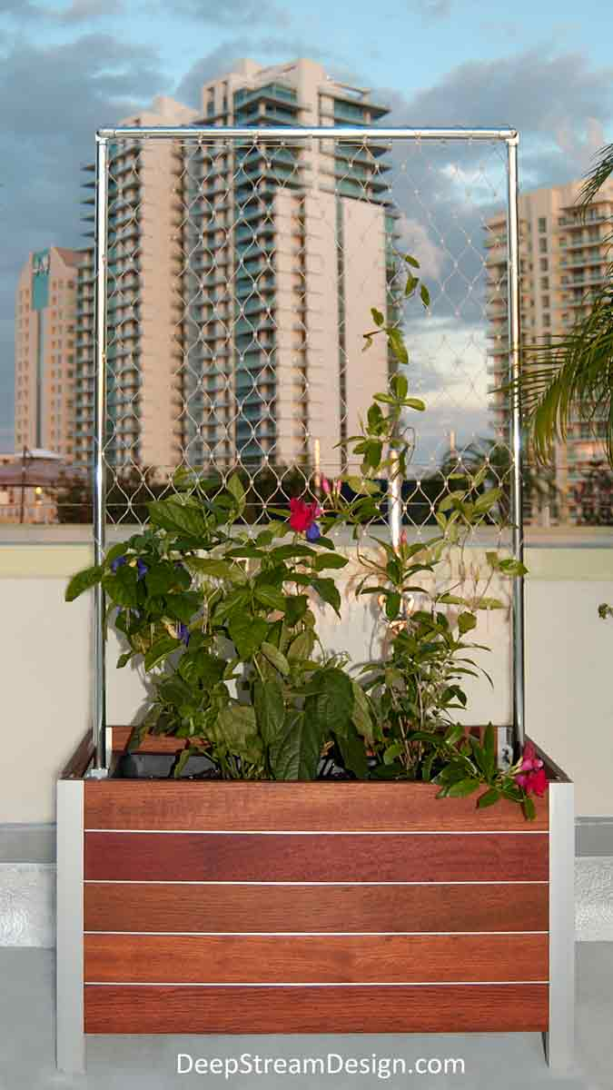 A Modern Wood Garden Planter with Trellis made with Jakob 316-stainless steel mesh and aluminum Trellis uprights on a penthouse roof terrace shows how vines grow up the mesh to create a natural privacy screen wall.