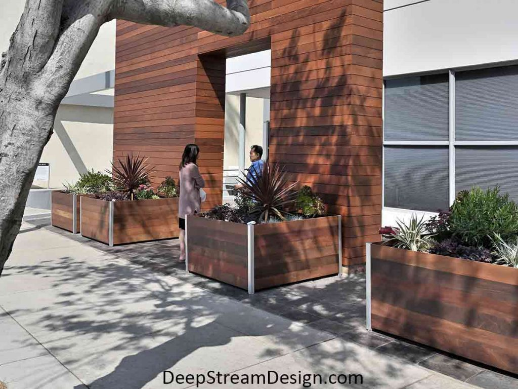 """Three 48"""" square commercial Mariner Ipe Wood Planters provide a large area for bushes and diverse landscaping seen here flanking an example of California modern high-tech architecture featuring wood and natural materials."""