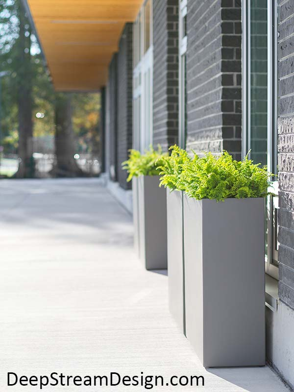 Modern tall tower aluminum planters with slate grey powder coating planted with bright green ferns accent modern architecture and tall windows of a modern gray brick building with natural wood clad overhangs.