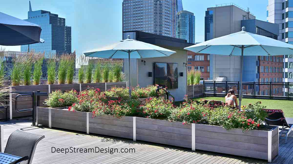 Large Wood Garden Planters landscaped with flowering plants and ornamental grasses, create protective parapet walls, and divide an urban roof deck surrounded by modern high-rise buildings.