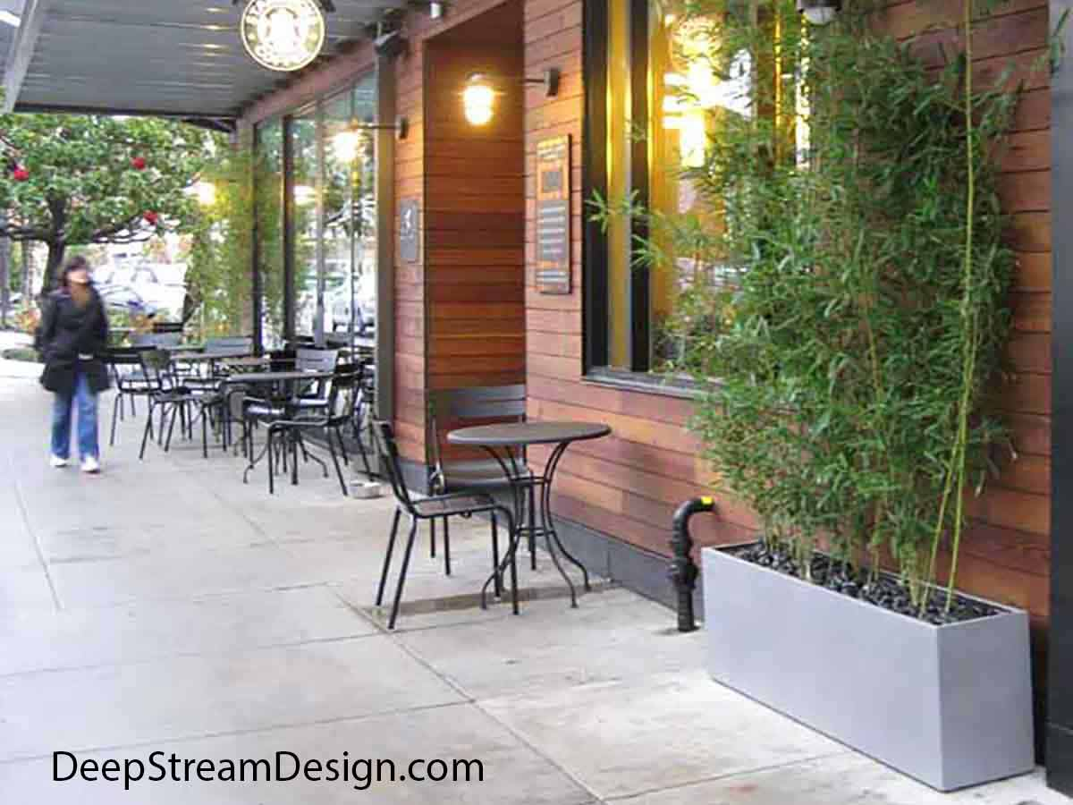 The ubiquitous light gray colored, long, low, rectangular Wilshire Fiberglass Garden Planters planted with tall bamboo line the wall of a Starbucks sidewalk café seating area.