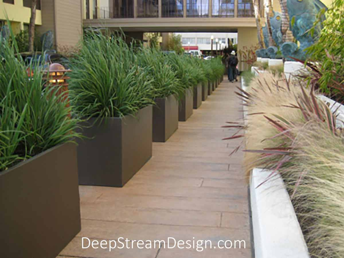 Many long rectangular bronze colored Wilshire Fiberglass Garden Planters landscaped with dark green tall grass line the walkway between commercial buildings.