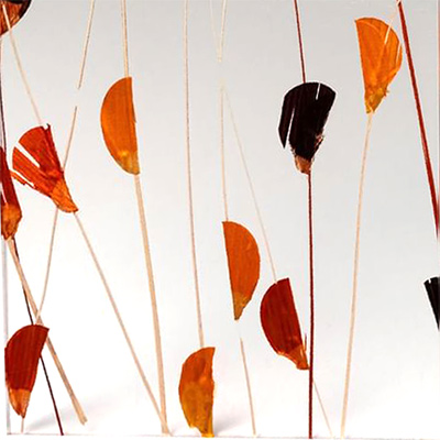 3-form Harvest Varia Ecoresin Panel:  Natural meandering reeds and leaves create wonderful spaces for light to pass through the timeless hues of fall.