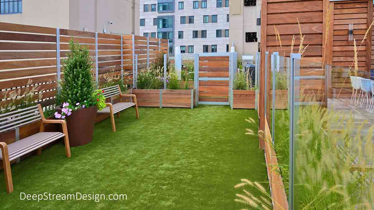 The interior view of a Rooftop Dog Park enclosure with planters, benches, bright green turf, and a double gated pet control area created with DeepStream's Long Wood Garden Planters and Glass and Wood Privacy Screen Wall atop a naturally landscaped apartment building roof deck with university and apartment buildings in the background.