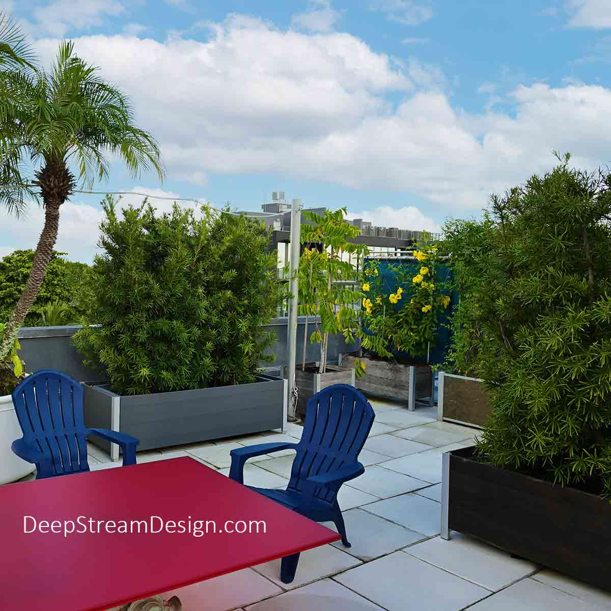 Atop a penthouse rooftop deck newly constructed buildings are blocked from view using Planter Privacy Screens growing hedges and trees in a variety of modern DeepStream Mariner and Audubon commercial planters. The hedges and trees are augmented using planters with trellises and vines with large yellow flowers, on this tropical penthouse rooftop deck dining area with a colorful red table and contrasting blue chairs.